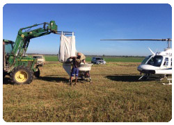 Helicopter seed and fertiliser spreader